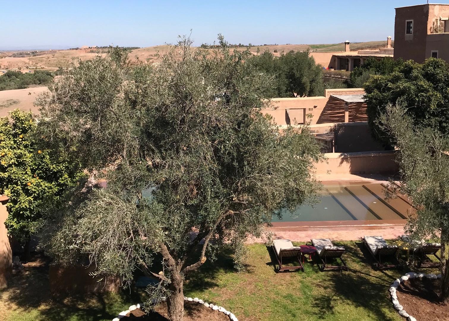 morocco yoga retreat 1